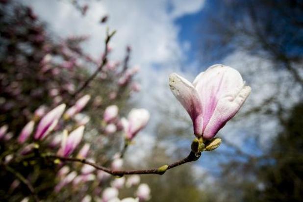 Une belle journée de printemps
