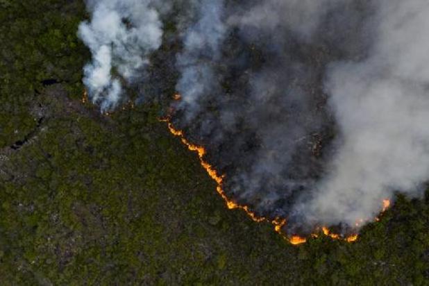 Brésil: les incendies au plus haut déjà en juin, avant la saison sèche