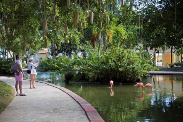 Coronavirus - Dominicaanse Republiek heeft 80 procent toeristen al terug