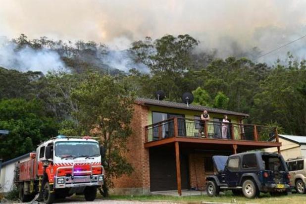 Bosbranden dit jaar goed voor 6.375 megaton CO2-uitstoot