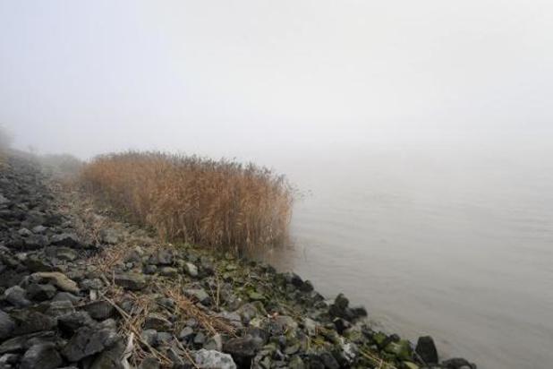 Météo - L'IRM lance un avertissement au brouillard et conditions glissantes en Wallonie