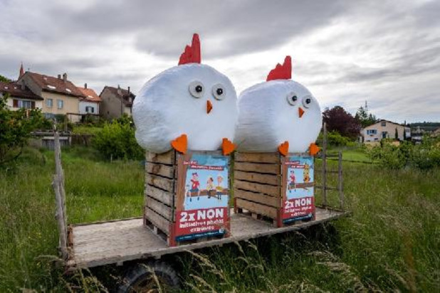 La Suisse vote ce dimanche sur l'interdiction des pesticides de synthèse
