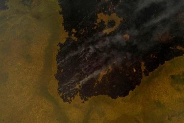 Brazilië roept noodtoestand uit voor bosbranden in Pantanal