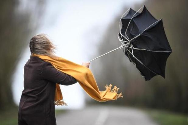 Weerbericht - Tot 16 graden dit weekend, met opnieuw veel wind