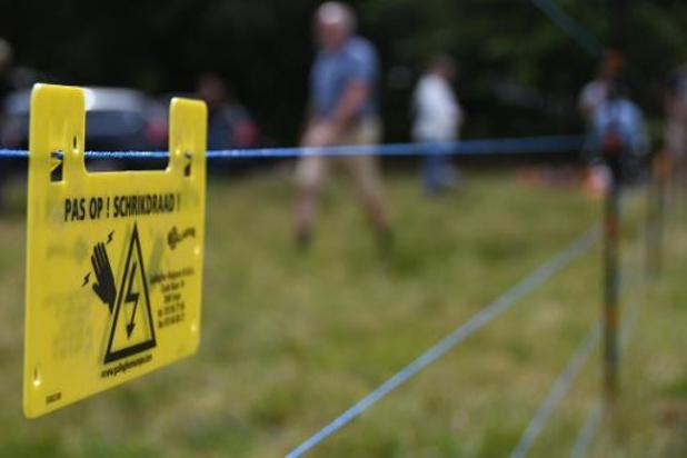 Wolf Fencing Team onderstreept dat wolfproof omheiningen werken