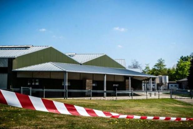 """Coronavirus - Report de l'abattage de """"plus de 10.000"""" visons d'élevages contaminés aux Pays-Bas"""