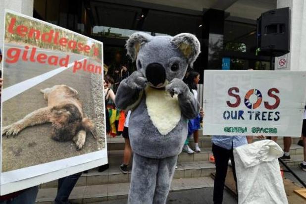 Bosbranden staan centraal bij Australisch schoolstaking voor klimaat