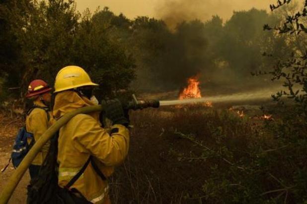 Catastrophes naturelles: ouragans et feux de forêts ont pesé en 2020