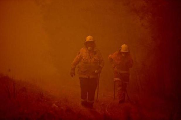 Bosbranden Australië - Premier Morrison krijgt kritiek van brandweermannen