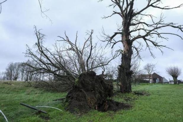 Officieel storm in België, maar zonder naam
