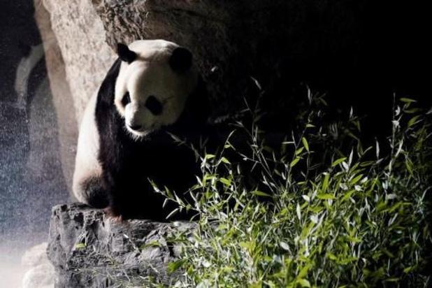 Ook indoor dierenparken mogen deuren maandag openen