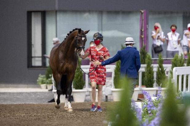 Les trois chevaux belges du dressage ont passé l'inspection vétérinaire avec succès