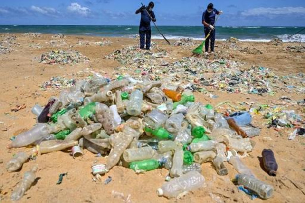 Alternative numérique pour l'opération Clean Beach Cup