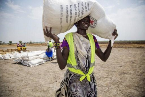 """Risque de """"catastrophe alimentaire"""" en Afrique de l'Ouest et centrale"""