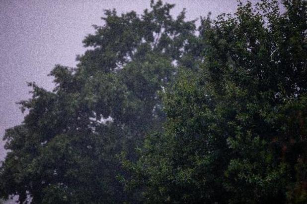 Tiens, voilà la pluie