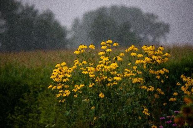 Météo - Un samedi sous les averses