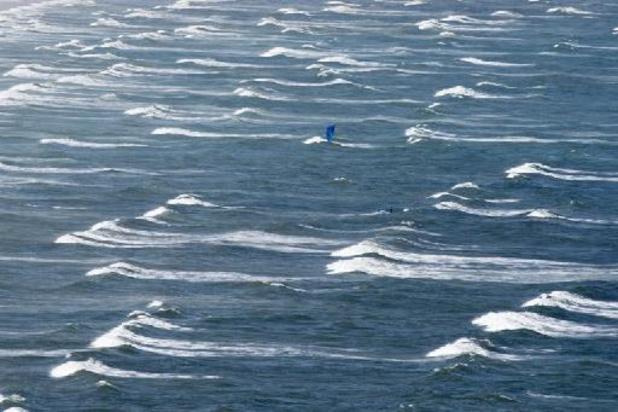 Etats-Unis: un requin blanc attaque un nageur au large des côtes californiennes