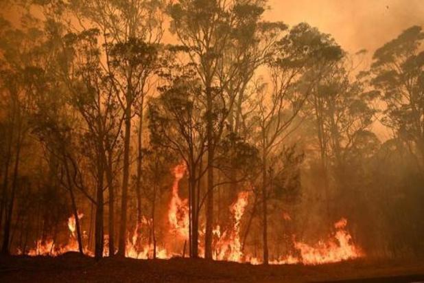 Australische hoofdstad zet zich schrap voor branden
