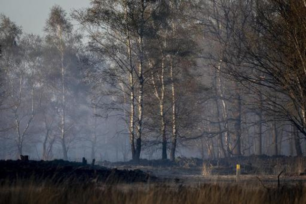Brand Brecht: 500 hectare natuurgebied vernietigd