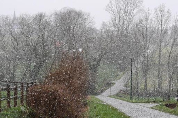 Neige ou neige fondante dans l'après-midi
