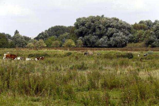 Dag van de Natuur laat Vlamingen kennismaken met natuurbeheer