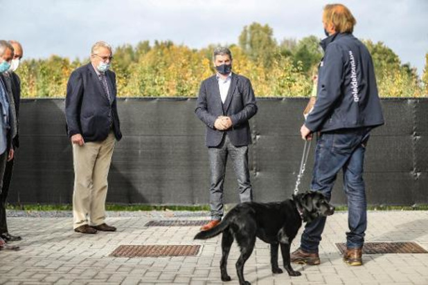 Prins Laurent brengt bezoek aan Belgisch Centrum voor Geleidehonden in Tongeren