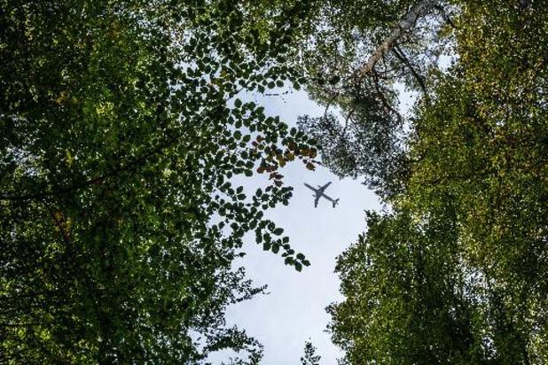 La Forêt de Soignes à la fête le 17 octobre