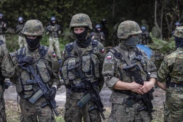 Des ONG polonaises dénoncent les refoulements des migrants vers le Bélarus