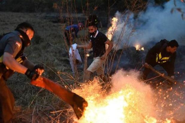 Le Paraguay lutte contre les incendies de forêt alors que le Congrès déclare l'urgence