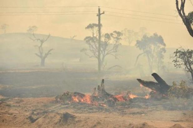 Australië: 'Rook bosbranden werd 445 mensen fataal'