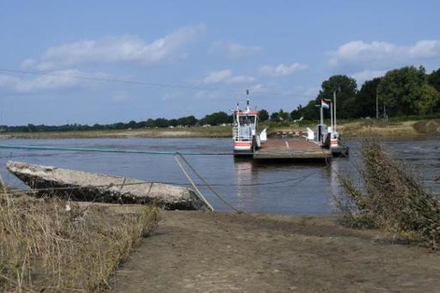 Noodweer - Damwand van veerpont in de Maas in Meeswijk moet vervangen worden