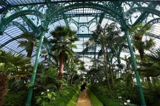 Le parc de Laeken, fermé au public, coûte un million d'euros à l'État chaque année