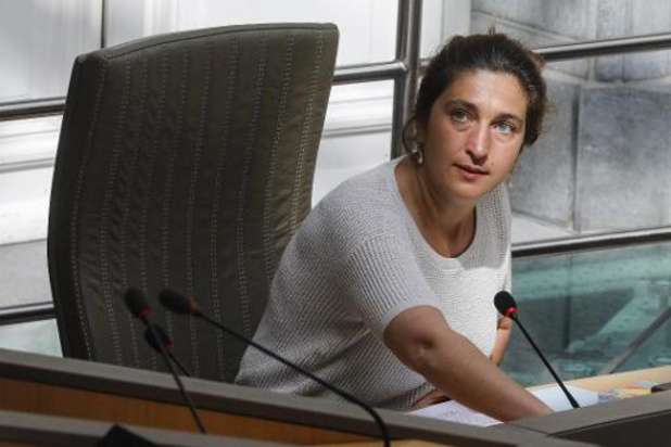 Minister Demir (N-VA) vraagt meer tijd voor werkstraffen