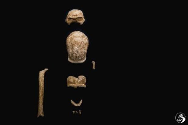 Resten van negen neanderthalers gevonden in Italiaanse grot
