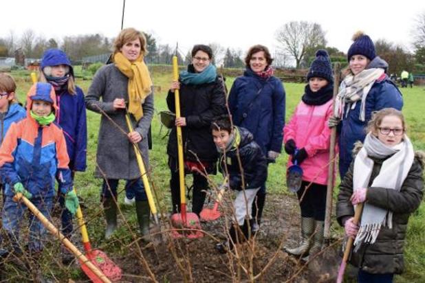 """Pour protéger la biodiversité, la Wallonie lance le challenge """"Yes we plant"""""""