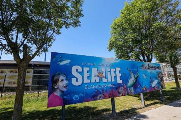 Sea Life Blankenberge houdt outdoor gedeelte open aan verlaagde prijs