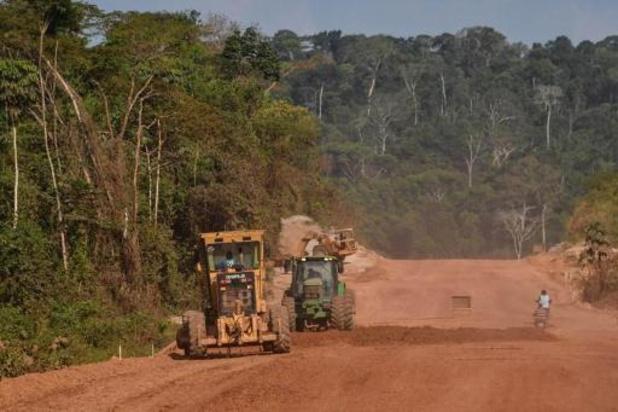 Amazonie: des fonds d'investissements appellent à l'arrêt de la déforestation