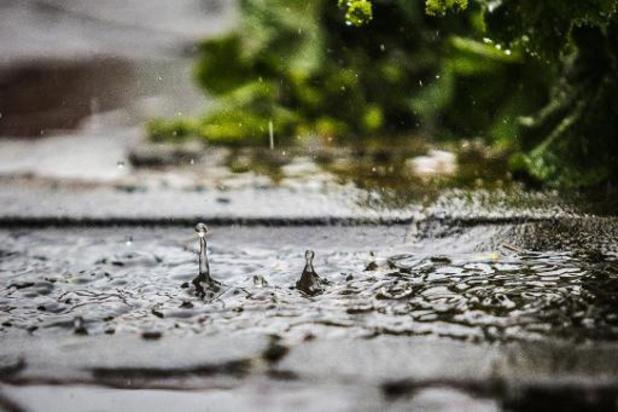 Buien en regen gekruid met wind