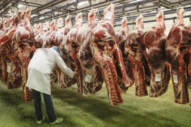 La Fédération belge de la viande demande du soutien pour le secteur porcin