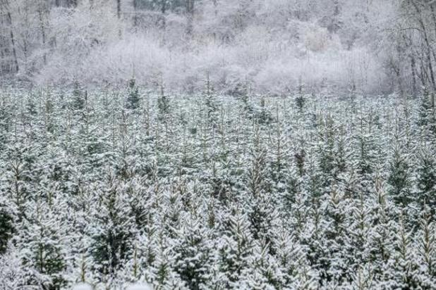 De la nébulosité et quelques flocons de neige prévus cette fin de semaine