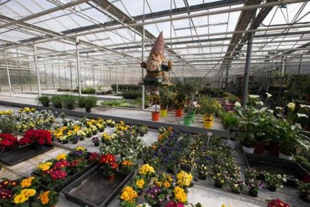 Lentemaanden vooral belangrijk voor kleinere tuincentra