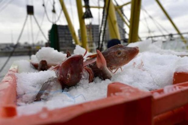 Vlaamse vissers na akkoord mogelijk weer naar Noorse wateren
