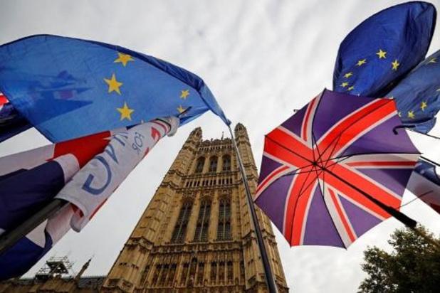 GB: des anti-Brexit appellent au vote utile pour bloquer la sortie de l'UE