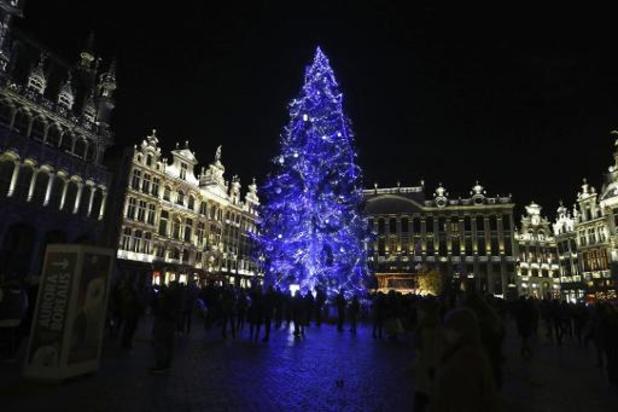 Le sapin qui trônera sur la Grand-Place de Bruxelles a été abattu à Stavelot