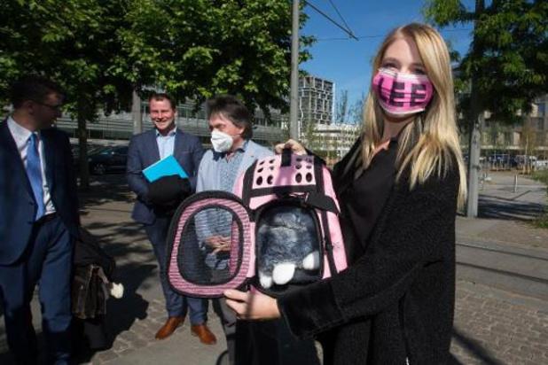 Minister Weyts heeft drie quarantainemogelijkheden voor katje gevonden