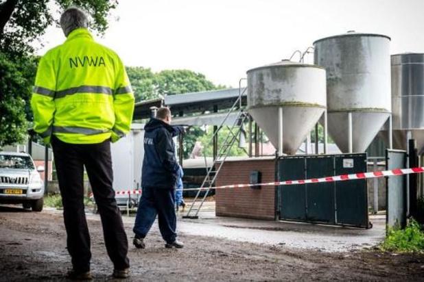 Les Pays-Bas démarrent l'abattage de milliers de visons dans un élevage contaminé