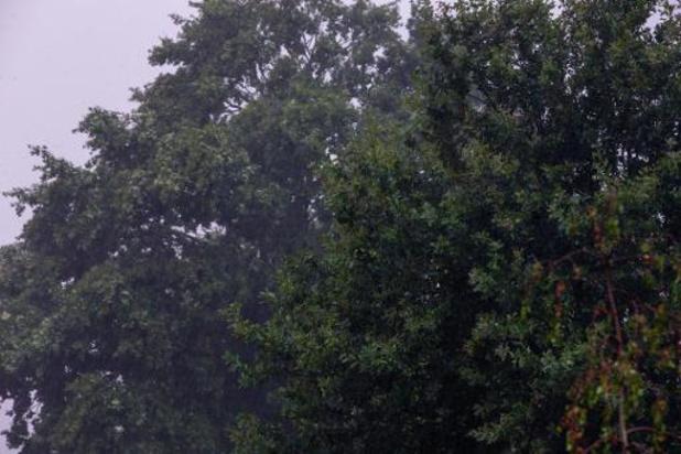 Alerte jaune aux orages dans le Hainaut