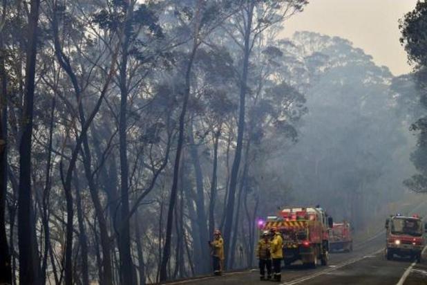 Feux de forêt en Australie - L'état d'urgence déclaré à Sydney et en Nouvelle-Galles du Sud