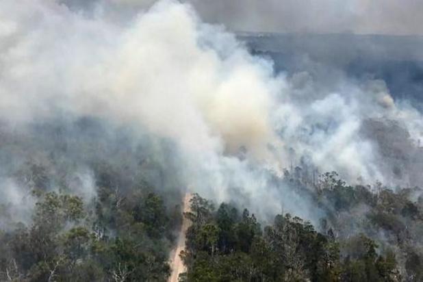 Brand op Australische Fraser Island onder controle