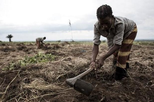 """Derde van Congolese bevolking """"in grote onzekerheid over voedsel"""""""